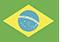 Flag-br2